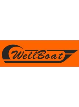 Лодки Вельбот (WellBoat)